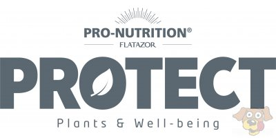 Pro-Nutrition Flatazor Protect Katze